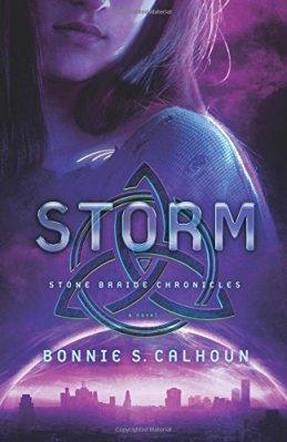 storm-book